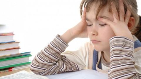 Escola a tempo inteiro: uma resposta ajustada a uma conceção errada.